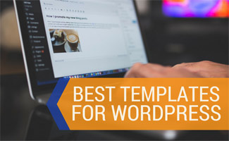 Screenshot of person on computer: Best Website Templates for WordPress