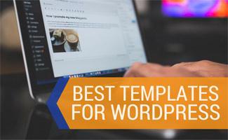 Screenshot of person on computer: Best Website Templates for WordPress