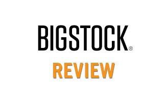 Bigstock reviews