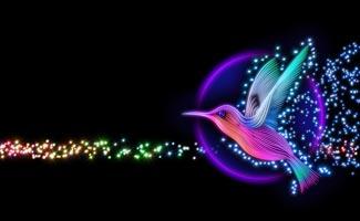 Digital hummingbird
