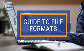 Person on computer (caption: Guide to File Formats)