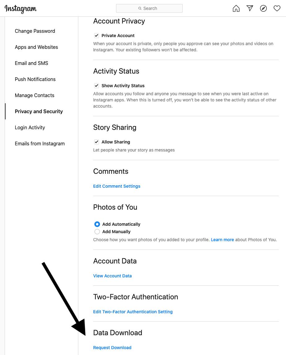 Instagram Data Request Screen