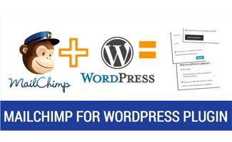 Logos in equation : Mailchimp for WordPress Plugin