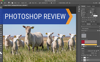 Screenshot of Photoshop (caption: Photoshop Review)