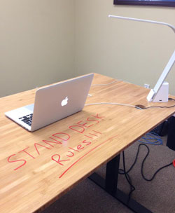 Stand Desk Customer Photo