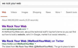 Google Organic Search Results Example