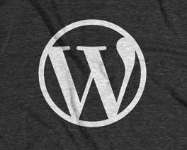 Wordpress Logo (Gray Texture)